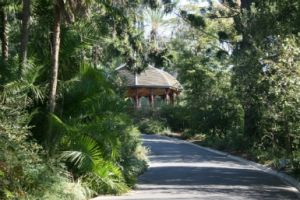 Royal Botanic Gardens Victoria - Surfers Gold Coast