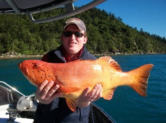 Gone Fishing by Coral Sea Fishing Charters Airlie Beach - Surfers Gold Coast