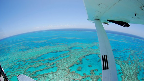 Air Whitsunday Day Tours - Surfers Gold Coast