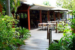 Lizard's Outdoor Bar and Grill - Surfers Gold Coast