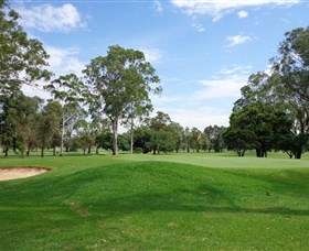 Singleton Golf Club - Surfers Gold Coast