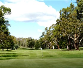 Cooma Golf Club - Surfers Gold Coast