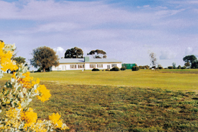 Lucindale Country Club - Surfers Gold Coast