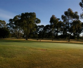 Winchelsea Golf Club - Surfers Gold Coast