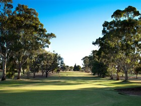 Loxton Golf Club - Surfers Gold Coast