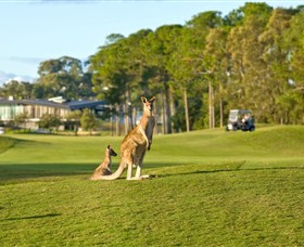Sanctuary Cove Golf and Country Club - Surfers Gold Coast