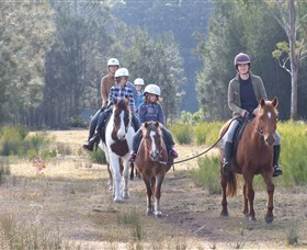 Horse Riding at Oaks Ranch and Country Club - Surfers Paradise Gold Coast