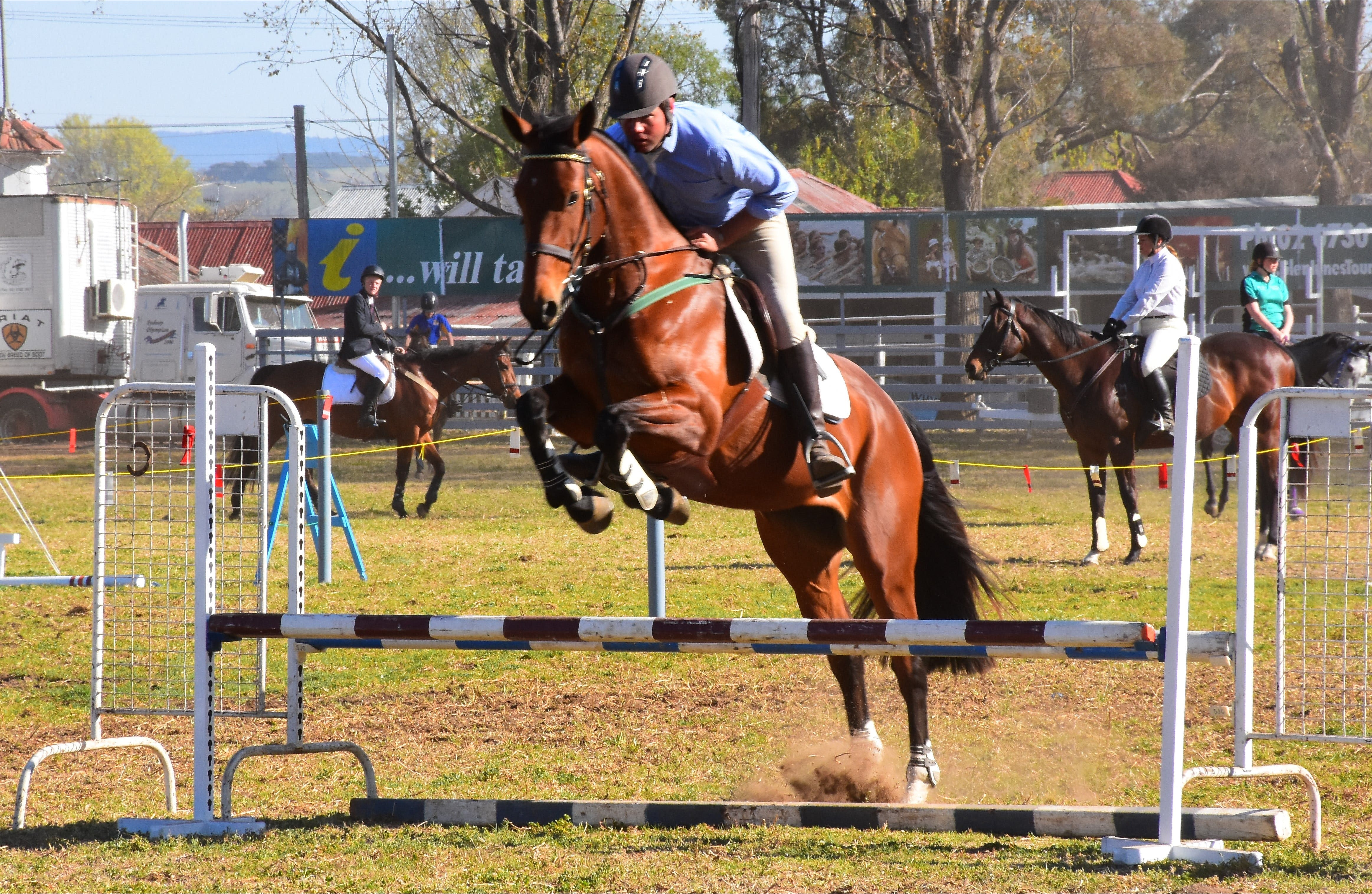 Glen Innes Pastoral and Agricultural Show - Surfers Gold Coast