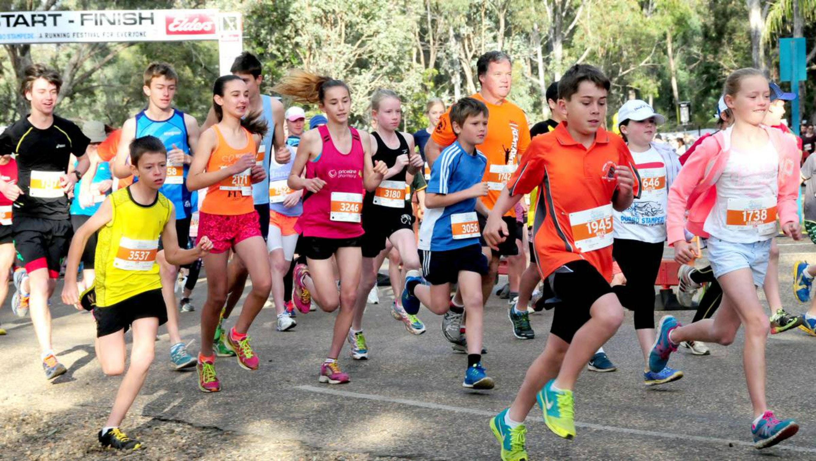 MAAS Group Dubbo Stampede Running Festival - Surfers Gold Coast