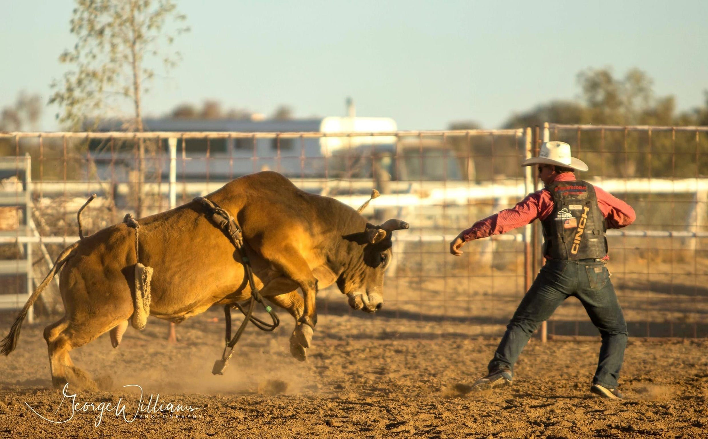 Walgett Charity Bushman's Carnival Rodeo and Campdraft - Surfers Gold Coast