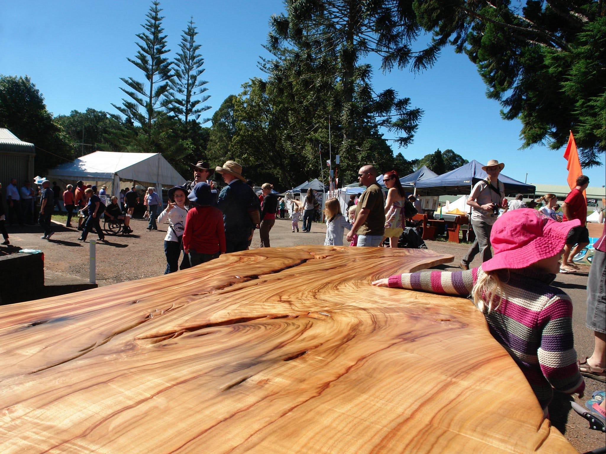 Maleny Wood Expo From Seed to Fine Furniture - Surfers Gold Coast