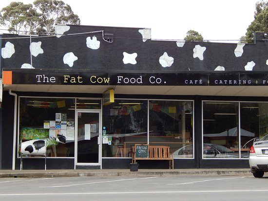 THE FAT COW Food Co. - Surfers Gold Coast