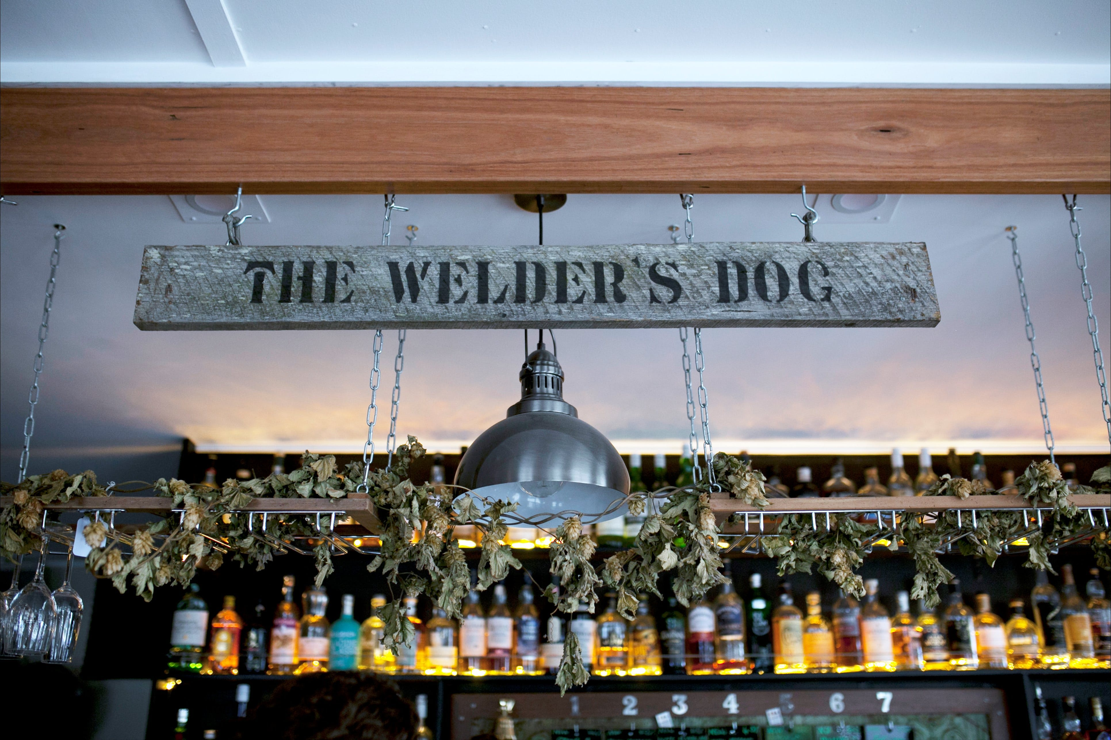 The Welders Dog - Surfers Gold Coast