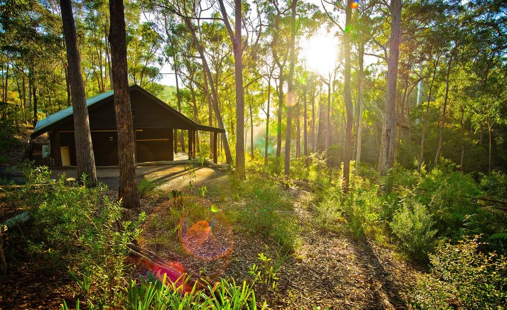 Kianinny Bush Cottages - Surfers Gold Coast
