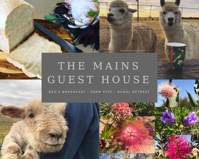 The Mains Guest House - Surfers Gold Coast